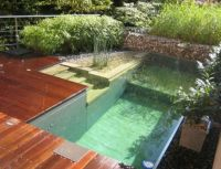 ded59 natural pool designs for small backyards Small ...