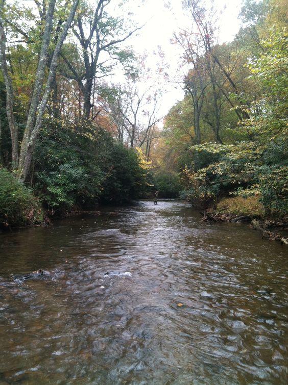 Little river NC | My trout streams | Pinterest | Rivers