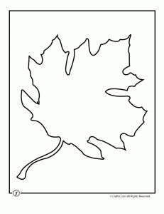 Leaf template, Leaves and Templates on Pinterest