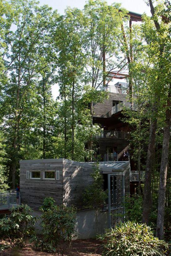 treehouse sanitários