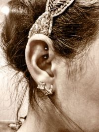 Cute Rook Piercing Jewelry | www.imgkid.com - The Image ...