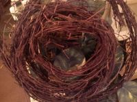 How to Soften Grapevines for Crafting | Crafting ...