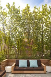 modern privacy screens trees patio landscape ideas outdoor ...