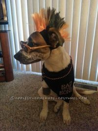 Cool Pet Dog Costume: Sully the Pupster of Halloween | Dog ...