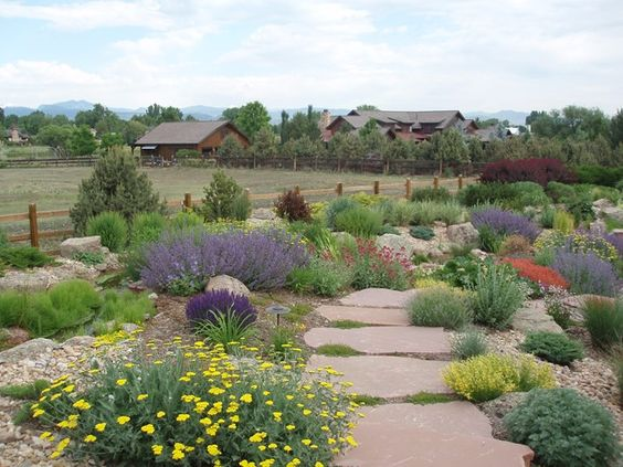 xeriscaping with large flat flagstones
