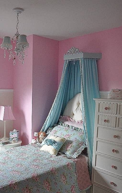 Bed Canopy 110 Dollars Marked Down Princess Canopy