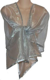 Amazon.com: Sheer Silver Organza Evening Wrap Shawl for ...