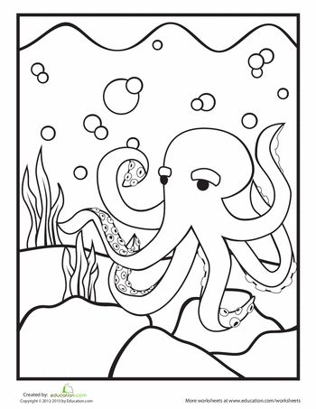 Coloring sheets, Worksheets and Octopus on Pinterest