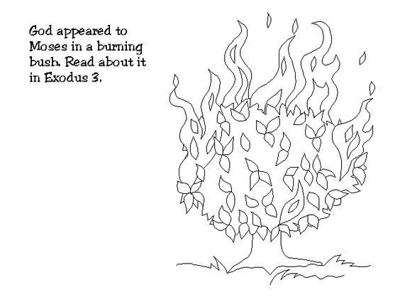 Burning bush, Burning bush craft and Bush craft on Pinterest