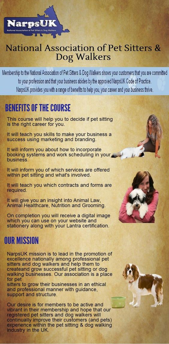 pet sitters forms