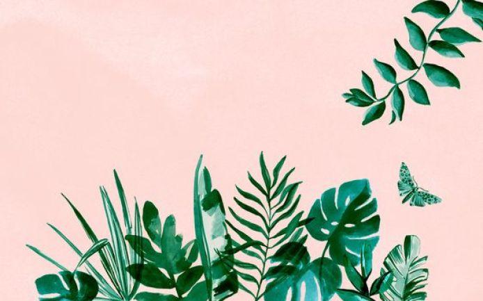 Tropical Summer Desktop wallpaper - Fond d'écran ordinateur summer