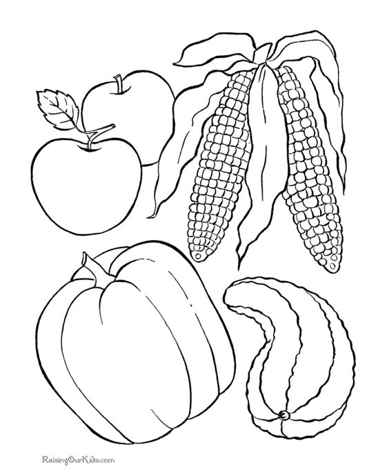 Popular, Thanksgiving coloring pages and Thanksgiving on