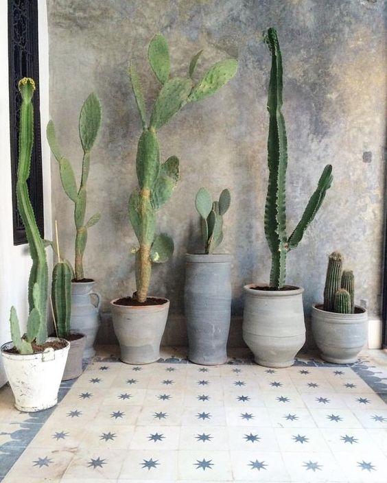 organic pottery, sculptural cacti, tile, wall finish: