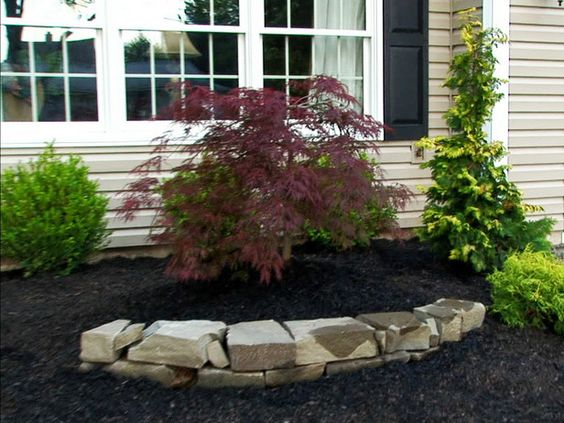 rock landscaping ideas plant
