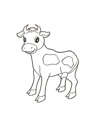Click to see printable version of Baby cow coloring page