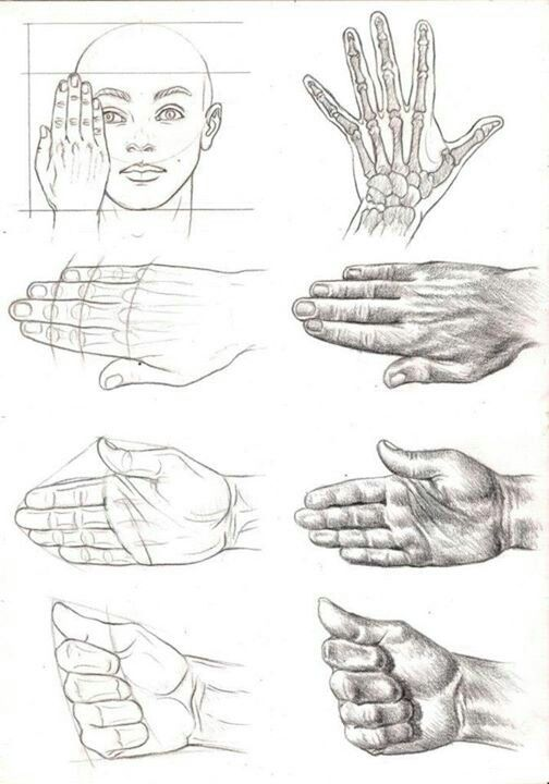 The hand, To draw and Hands on Pinterest