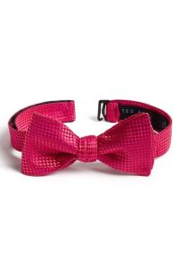 Cute Bow Tie | Men's Style | Pinterest | Ted baker, Bow ...