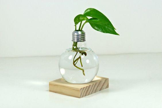 Repurposed Light Bulb Vase with Natural Wood Holder -- Modern Minimalist Glass Planter, Natural Wood Flower Vase (Plant Not Included) by eGardenStudio on Etsy https://www.etsy.com/listing/235591899/repurposed-light-bulb-vase-with-natural: