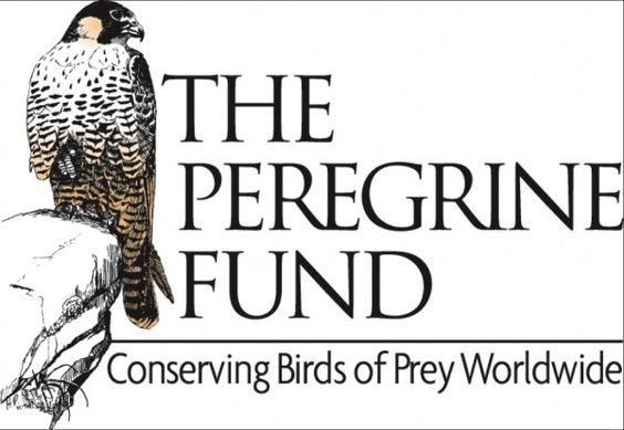 The Peregrine Fund provides educational resources for