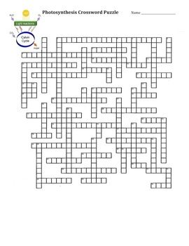 Photosynthesis, Crossword and Crossword puzzles on Pinterest