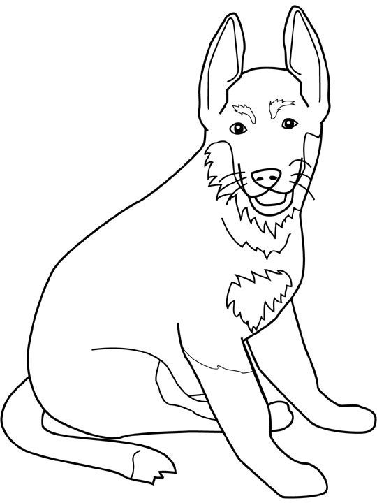 Coloring pages, Coloring and German shepherds on Pinterest