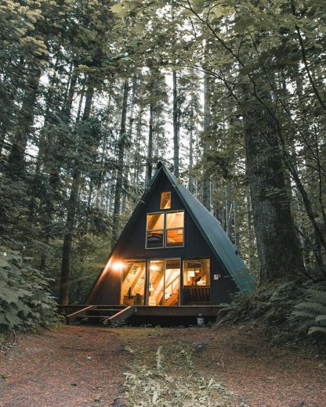 cabin fever:
