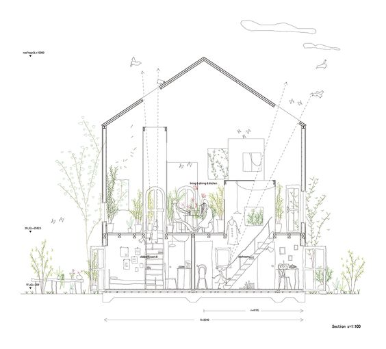 Section. Image courtesy of Studio Velocity. Click above to
