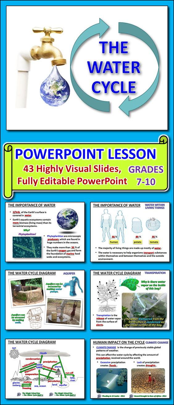 The Water Cycle PowerPoint Editable High resolution