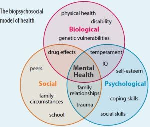 Social Workers Assessment Basics | Health psychology