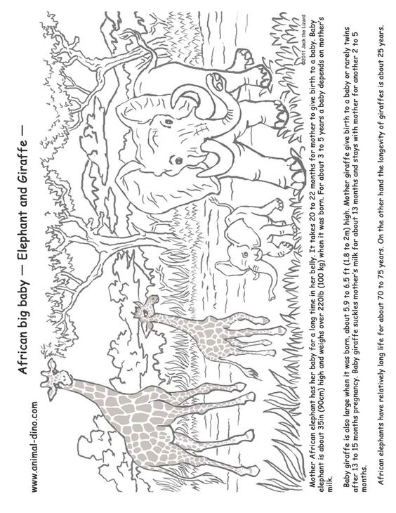 Youth Coloring page related to Africa, part of a