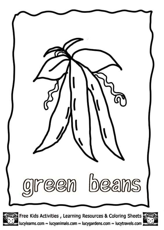 Vegetable Coloring Pages Growing Green Beans,Lucy Free
