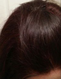 Ion Demi Permanent in 3RV Burgundy Brown right after ...