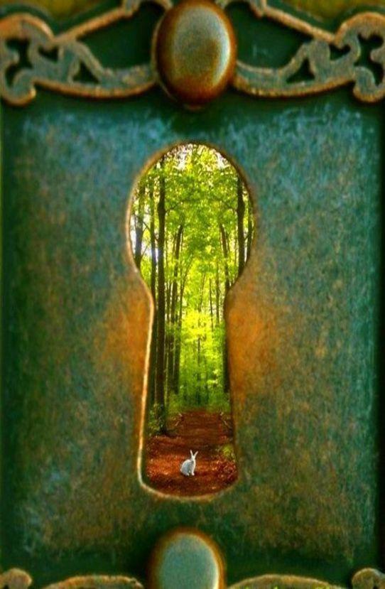 Falling Down A Portal Wallpaper Wonderland Elizabeth Taylor The White And Doors