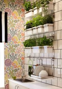 Position your herb wall in the kitchen for easy access ...