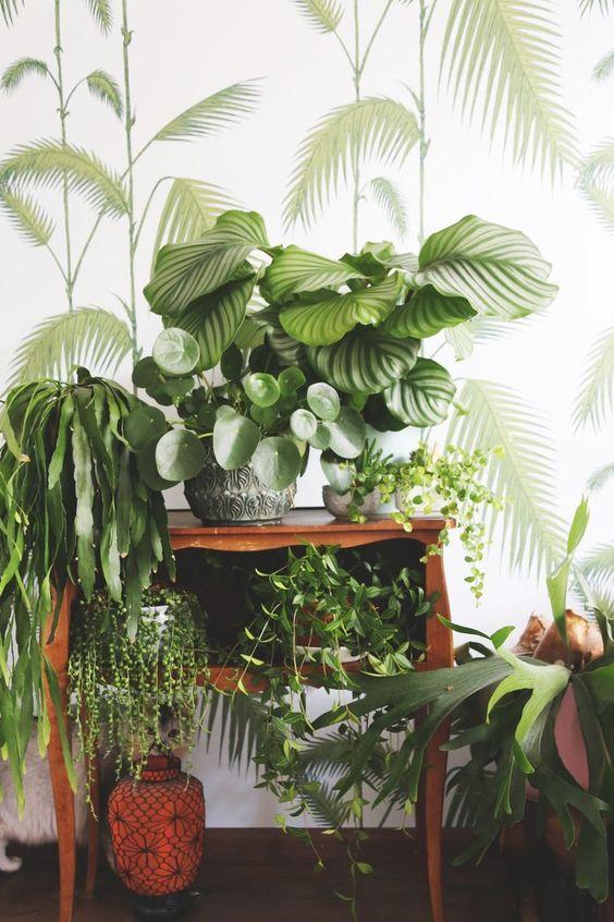 Bohomian urban jungle met palmbomen behang: