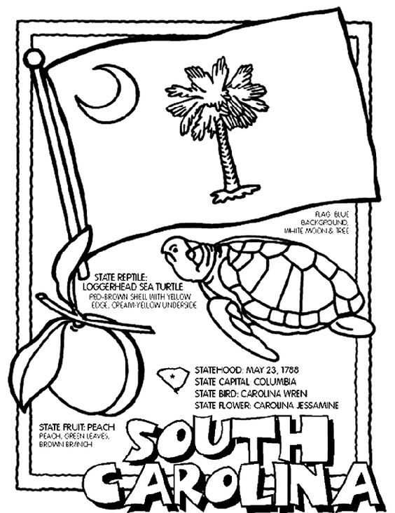 South carolina, Coloring pages and Coloring on Pinterest
