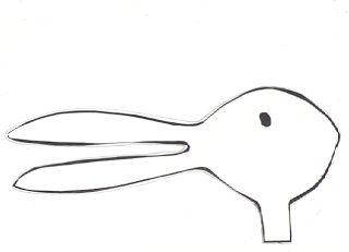 Rabbit, Ducks and Opinion writing on Pinterest