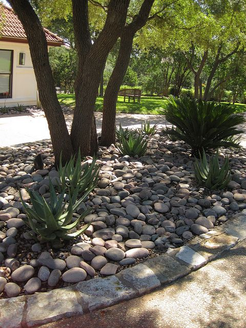 simple xeriscaping idea under