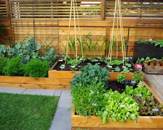 Herb And Vegetable Garden Ideas The Gardening