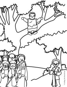 Zacchaeus, Word of god and Coloring pages on Pinterest