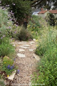 California native plants, Front yard gardens and Gravel ...