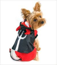 Devil Costume for Dogs | Party yorkie | Pinterest | Dog ...