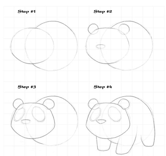 Drawing tutorials, Drawings and Animal drawings on Pinterest