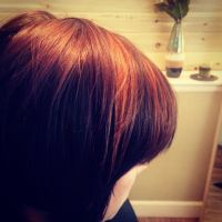 Burnt sienna hair color and highlights with short razor ...