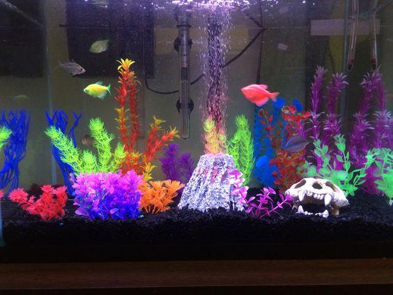 glofish tank decor petsmart