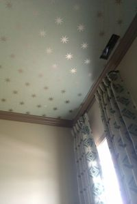 adorbs metallic ceiling painted | Baby Rooms | Pinterest ...
