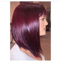 Pravana Color By Christian See Creative Color By Tampa39s ...