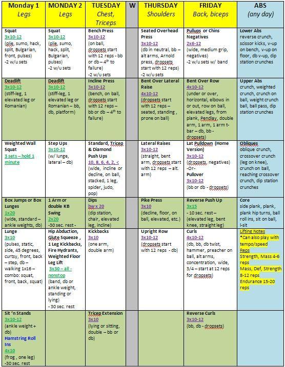 bodyboss ultimate body 12 week fitness guide pdf
