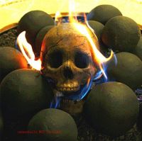 PayandPack DELUXE Logs - Imitated Human Skull Fire Gas Log ...