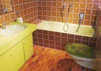 Bathroom from the 1970s | Historic Bathrooms | Pinterest ...